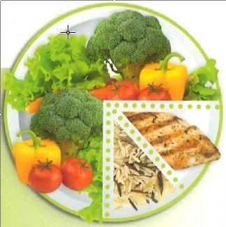 plate model penurunan berat badan